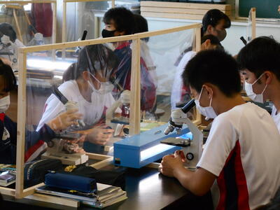 理科の顕微鏡実習授業
