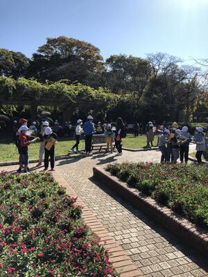 里見公園に到着。グループ毎にネイチャービンゴに挑戦します。